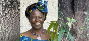 Amplifying Wangari Maathai's Voice for a Better Africa