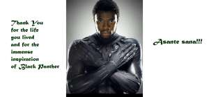 Thank You Chadwick Boseman for the Life You Lived